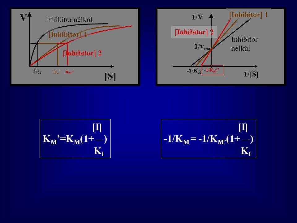 [S] V [I] KM'=KM(1+ __ ) Ki [I] -1/KM = -1/KM'(1+ __ ) Ki 1/V